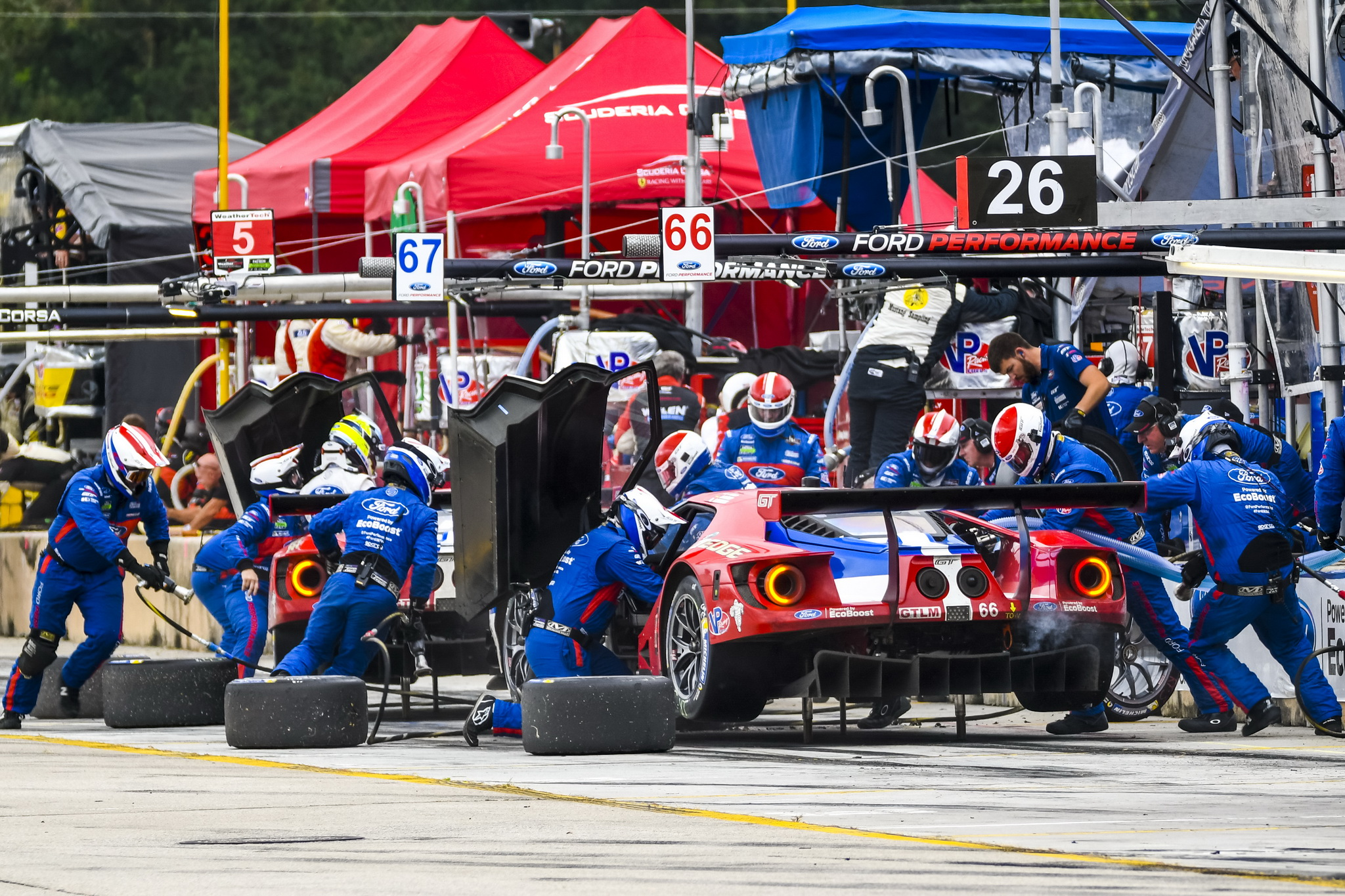 Ford GT's Fight for Podium, Manufacturer's Championship Comes to Dramatic Conclusion At Petit Le Mans